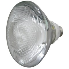 55-000 20W Energy Saving Lamp