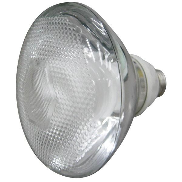 55-000 20W Energy Saving Lamp