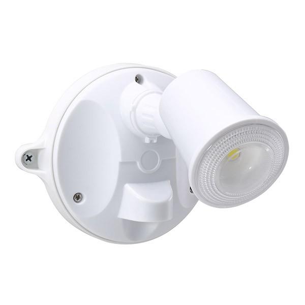 55-153 LED Spotlight 10W (White)